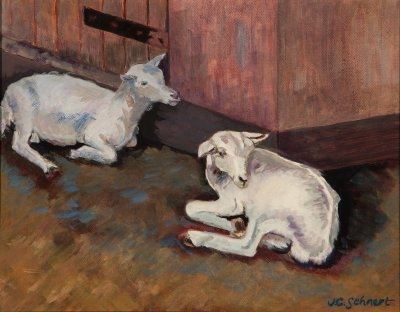 "Two Irish Goats - 11"" x 14"" - Oil on Board"