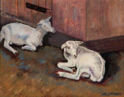 "Two Irish Goats - 11"" x 14"" - Oil on Board"