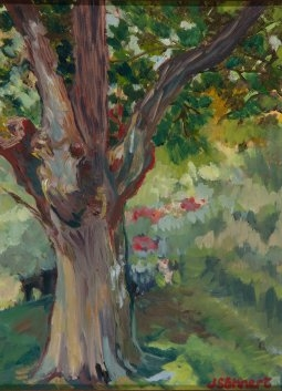 "Old Maple Tree - 10"" x 12"" - Oil on Board"