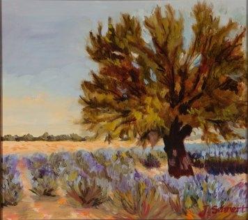 """Lavender Field - 11"""" x 14"""" - Oil on Board"""