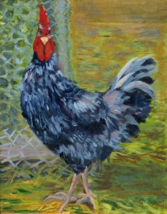 "Rooster with an Attitude - 9"" x 12"" - Oil on Board"