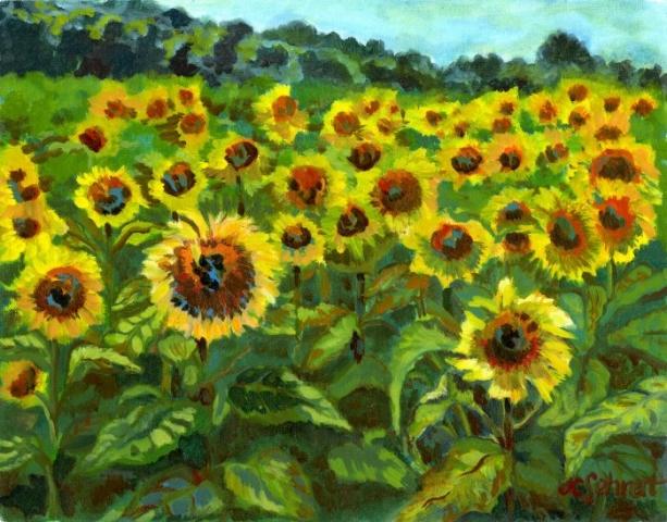 """Field of Sunflowers - 11"""" x 14"""" - Oil on Board"""