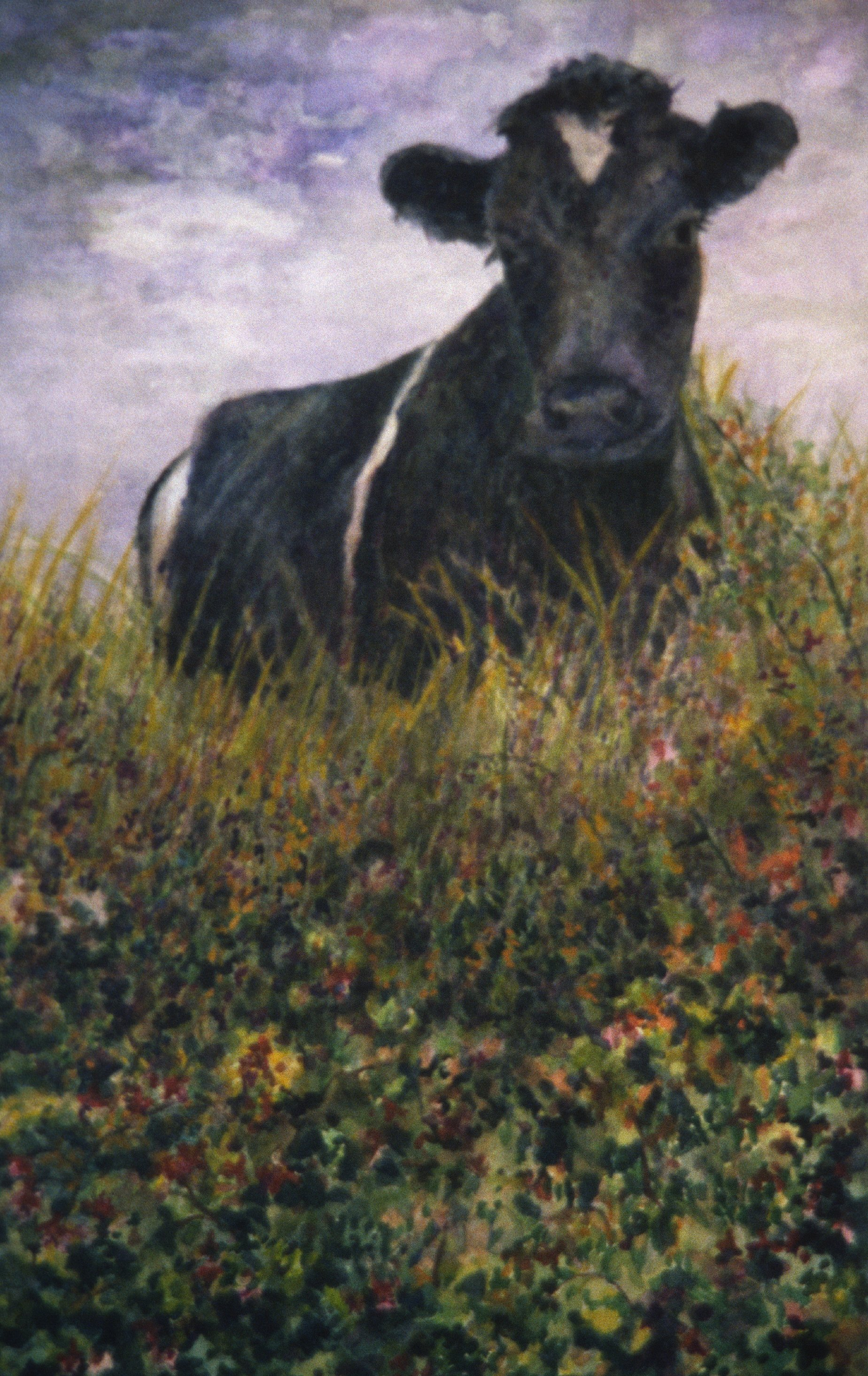 "Irish Cow Watching - 9"" x 12"" - Arches Paper - SOLD"